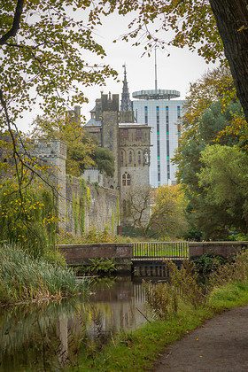 MD8C0729 